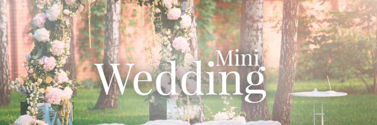MIni-Wedding-Banner1